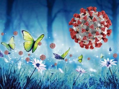 o-efeito-borboleta-enquanto-a-quarentena-agoniza